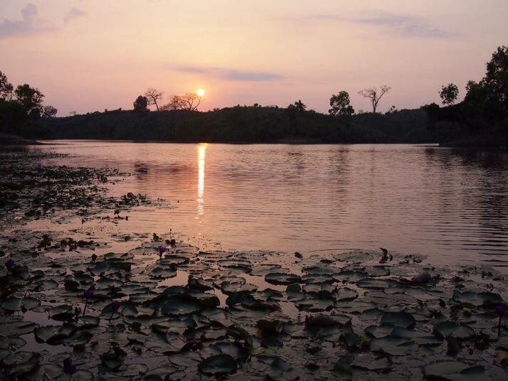 Sunset over Madabpore lotus leaf lake