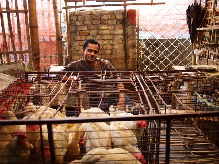 Chicken seller, Rajshahi