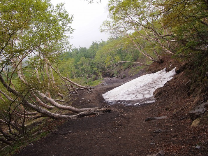 The start of the Yabashi Trail, from 5th Station to 6th. There's still snow on the ground at the end of June