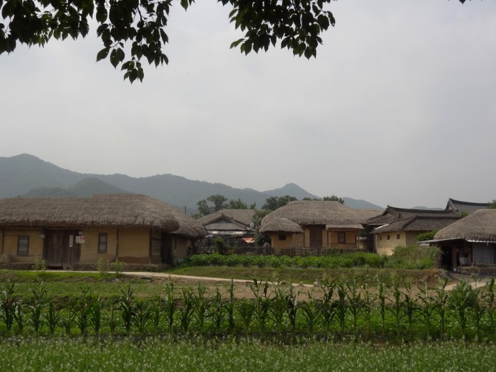 Old Korean-style buildings still being used in the Hahoe Folk Village, and we saw some new ones in the same style being built too