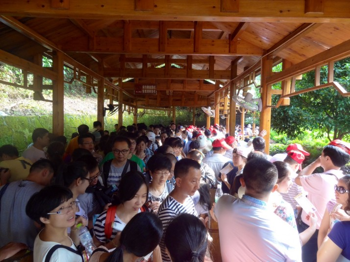 Queue for Tianzi mountain cable car