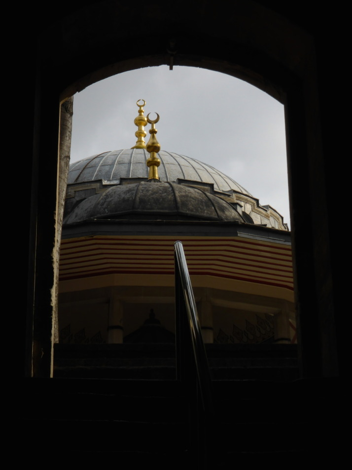 The domes of the Atik Valide şadirvan and mosque viewed from the medrese