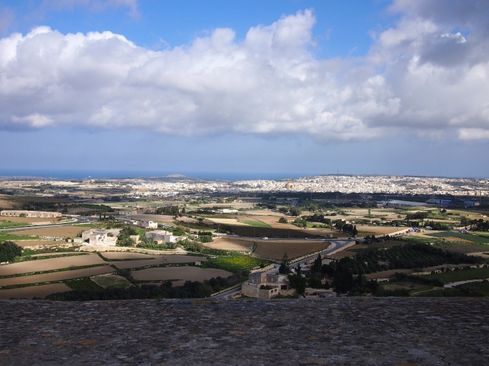 View from Mdina walls