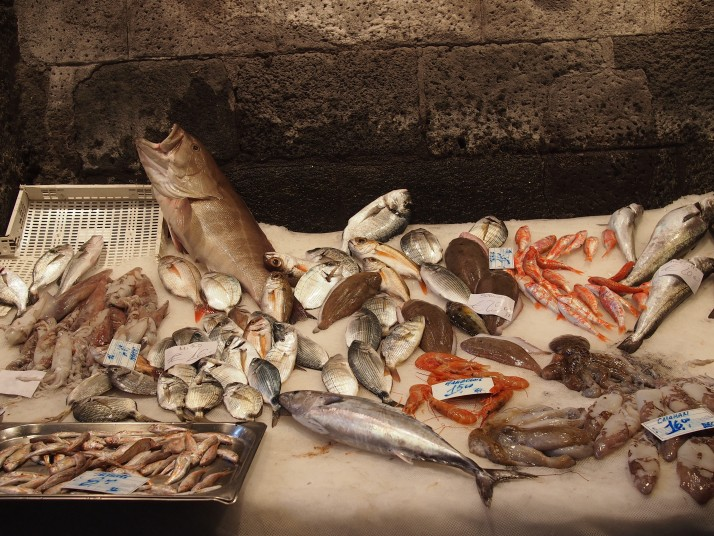 Fish display