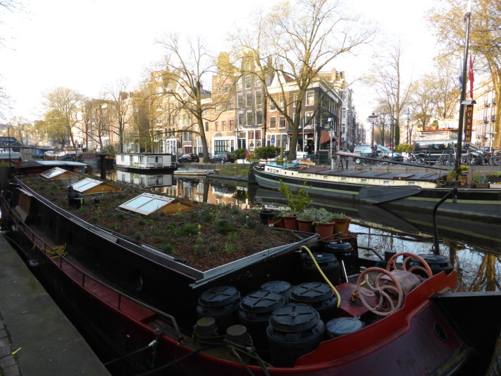 Canal boats, Amsterdam, Netherlands