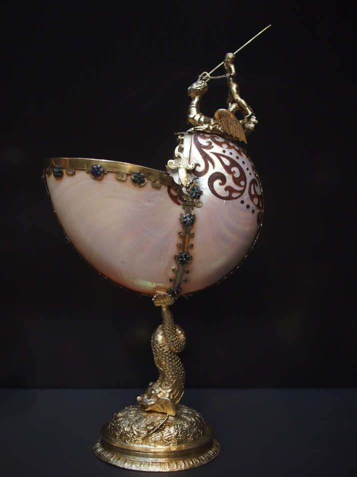 Nautilus cup