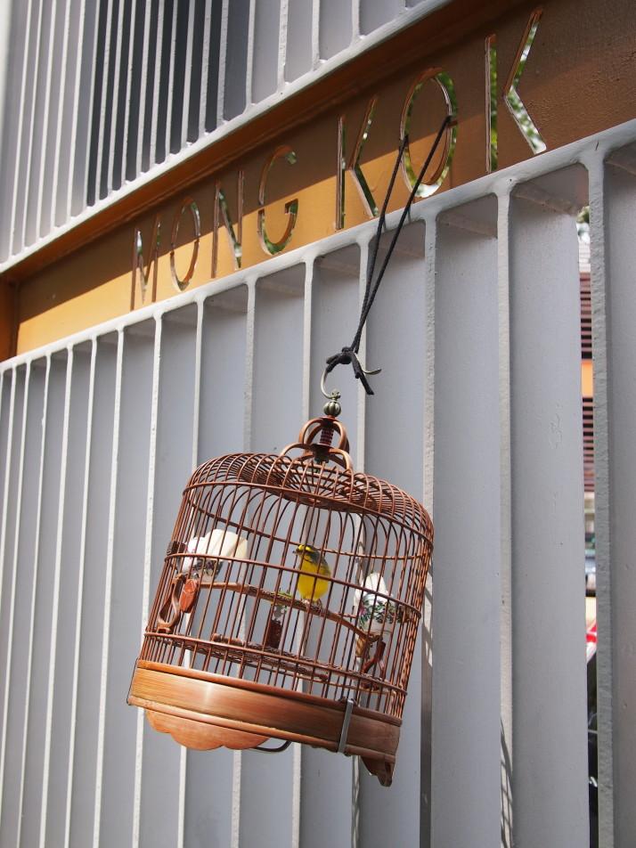 Mong Kok bird market
