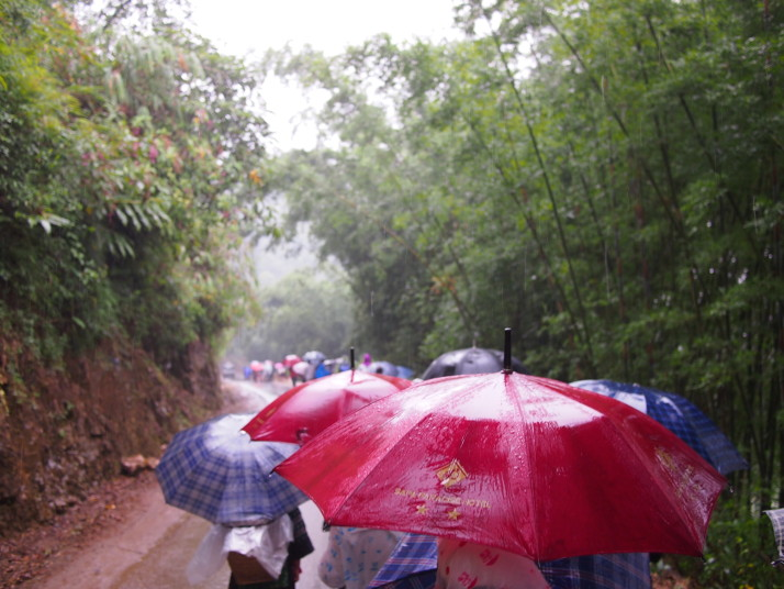 Umbrellas in Sa Pa
