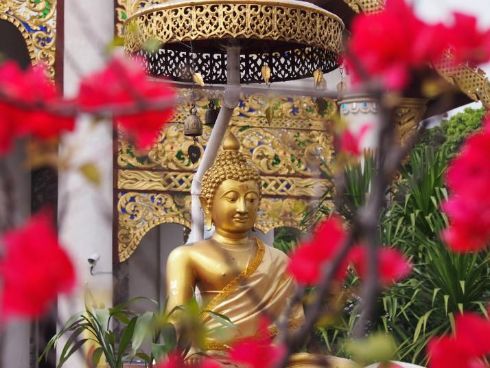 Buddha statue, Chiang Mai