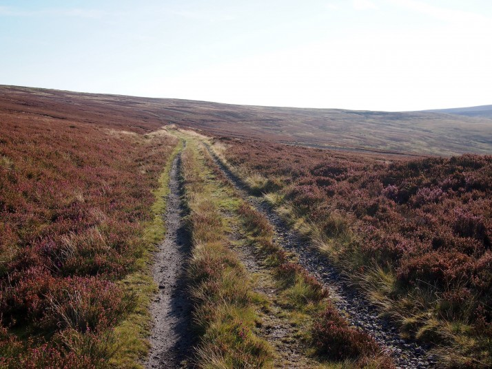 Moorland track above Rookhope