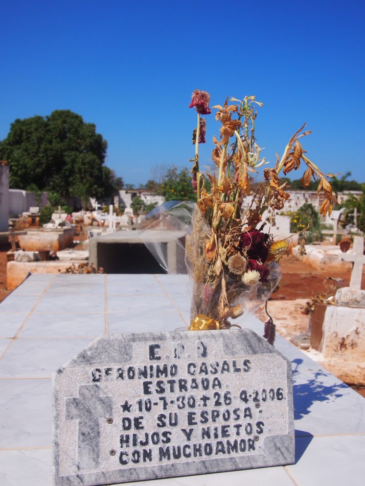 Dried flowers on grave, Trinidad