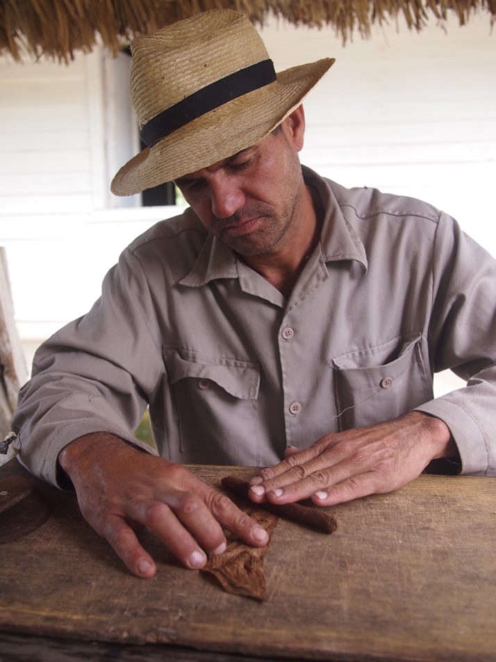 Cigar rolling demonstration
