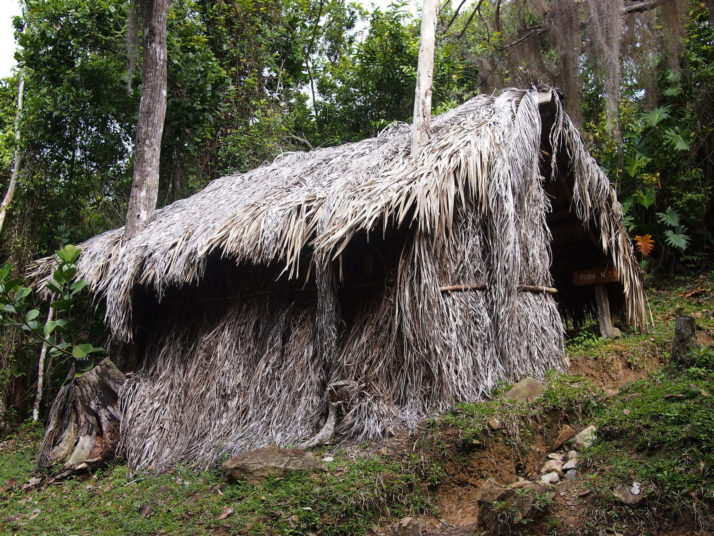 Straw hut checkpoint