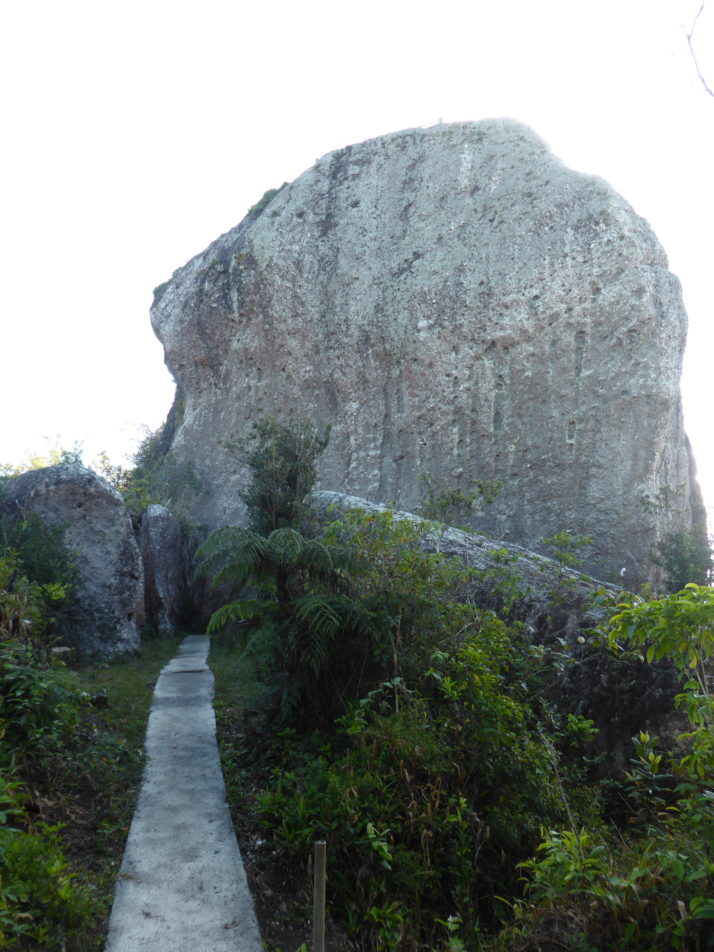 View of the Gran Piedra or large stone from the footpath in Santiago, Cuba