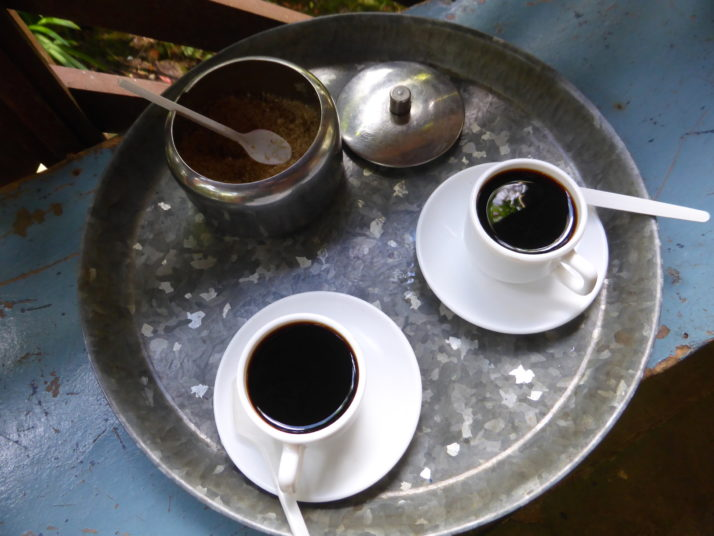 Two cups of coffee on a silver tray from beans grown at the Cafetal Isabelica, Santiago