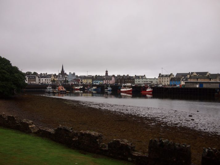 Stornoway and part of the harbour from the castle grounds